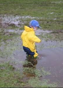 A Wikkipiccy of some small kid in a serious puddle.   Davidhc
